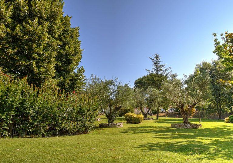 Parco Flaminio di Roma - ItalyAirstream Park Roma